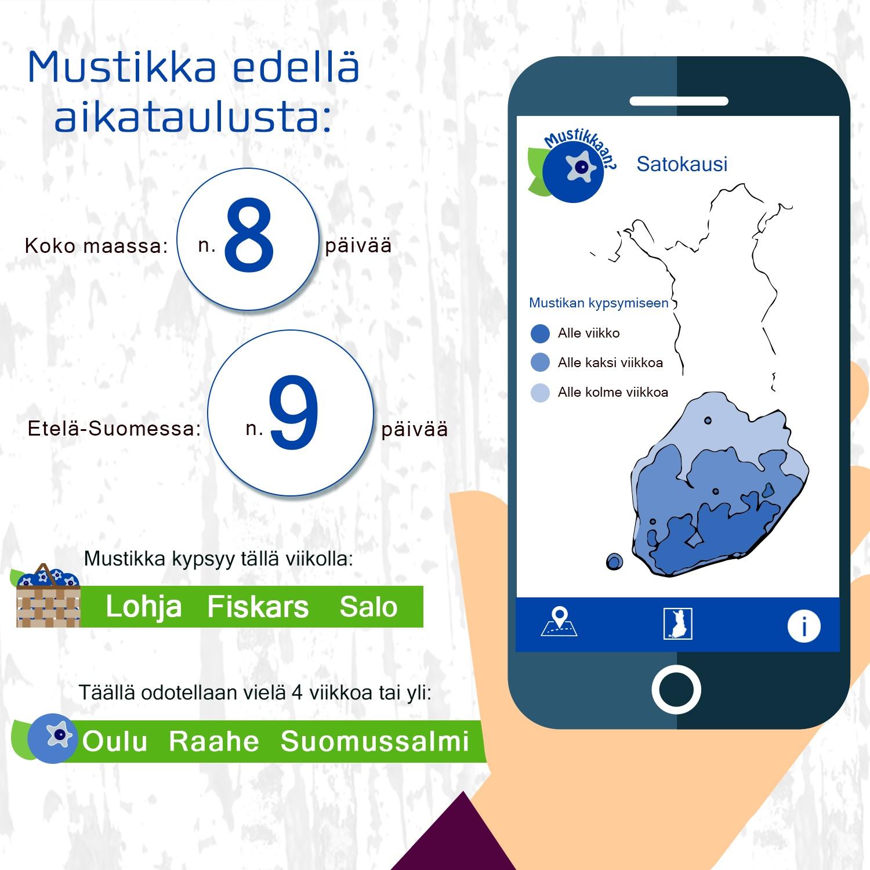MUSTIKKA infograf 26.6.18