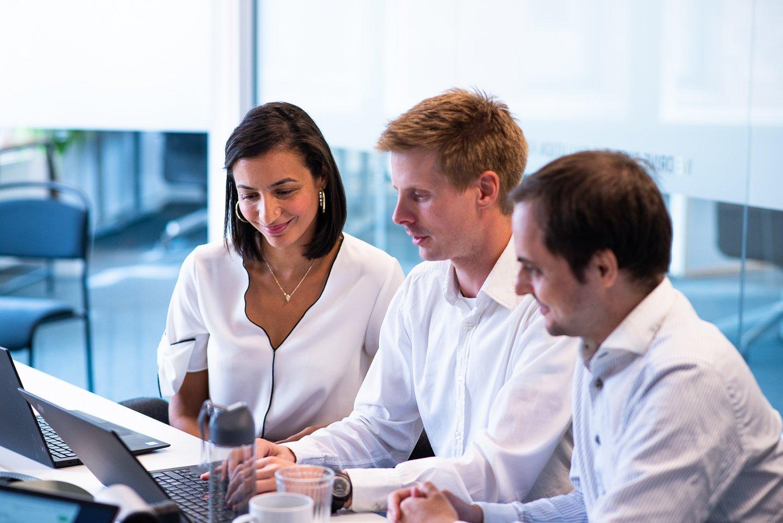 kollegor som samarbetar vid en dator